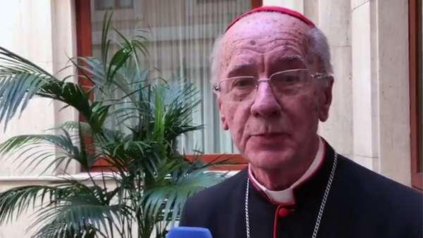 Cardeal Hummes indica três possíveis eixos do Sínodo Pan-amazônia